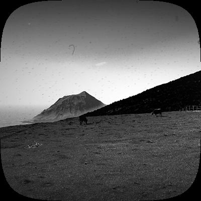 白黒フィルム